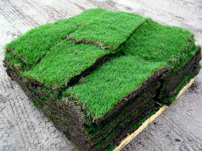 pallet of grass example